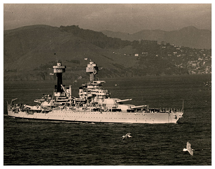 Picture of the USSWV in the ocean with birds and mountains in the background.